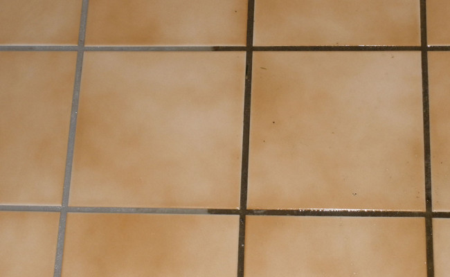 Ceramic Tile 2
